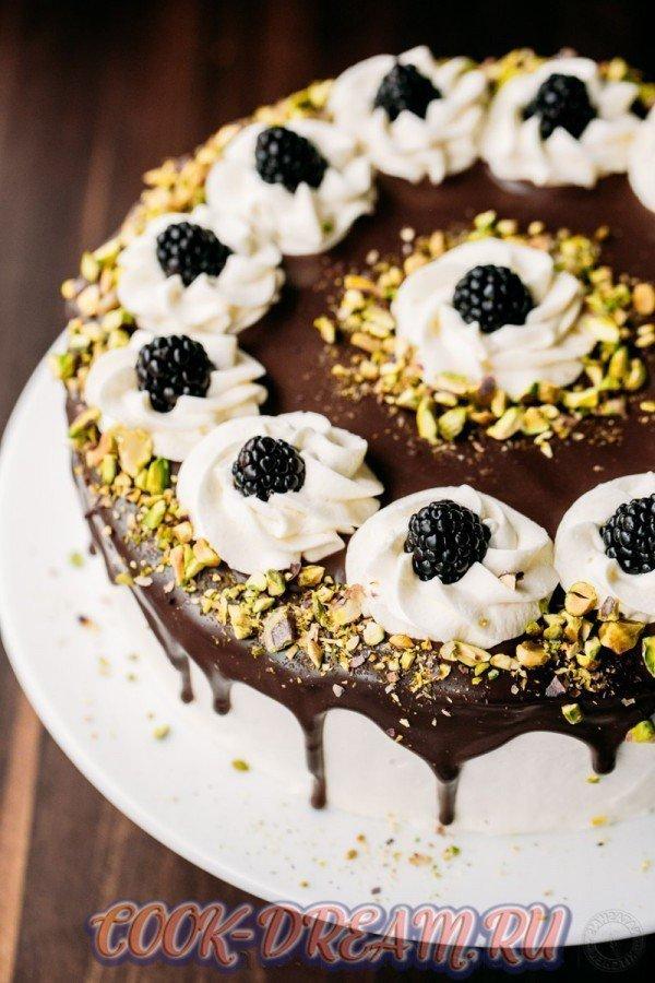 Маковый бисквит с ромовым сиропом: английский рецепт торта.