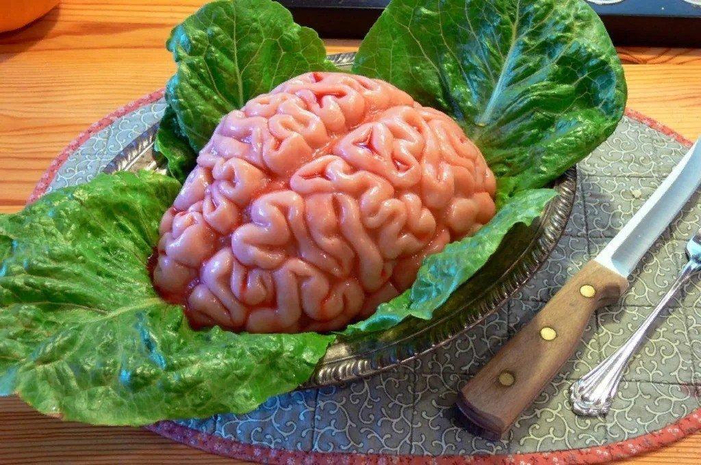 mozgi-4931829